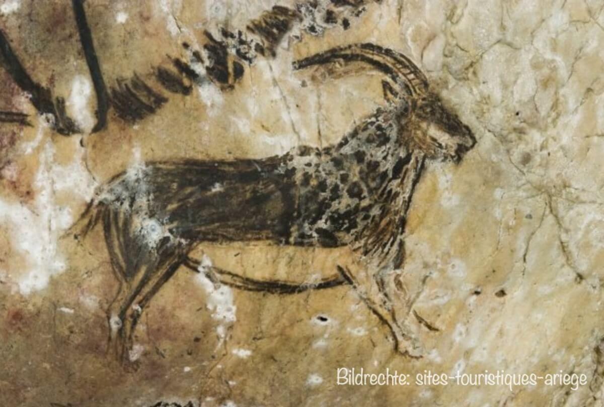 Höhle von Niaux: Malerei eines Steinbock