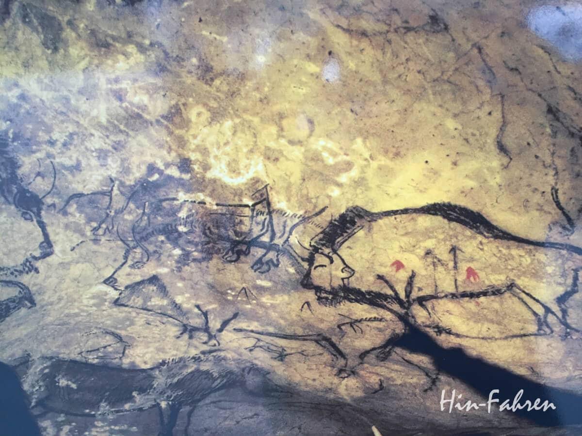 Foto der wichtigsten Malereien von Niaux