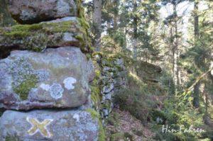 Steine der Heidenmauer im Wald