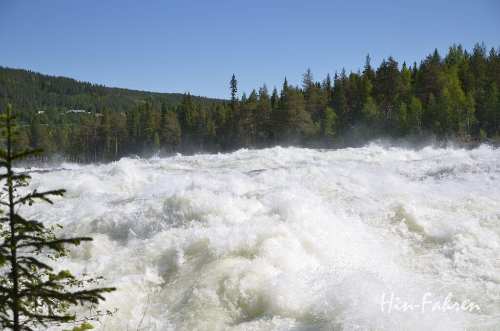 Gewaltige Wassermassen in Storforsen