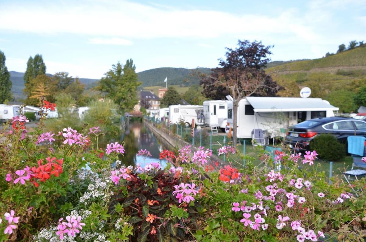 Blumen, Wohnmobile, Wohnwagen und Weinberge in Turckheim