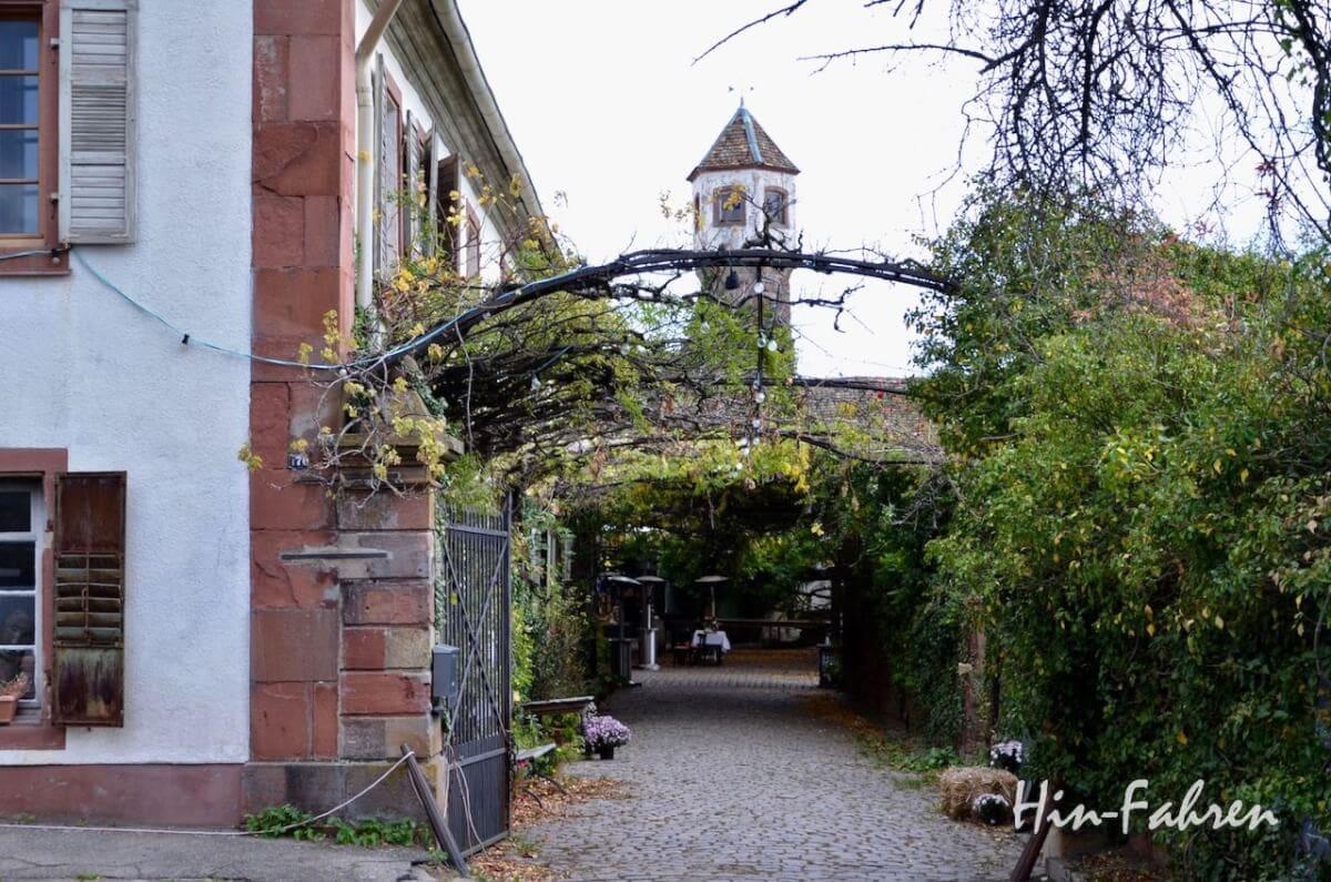 Wochenende mit Wohnmobil in der Pfalz: Spaziergang durch Edenkoben