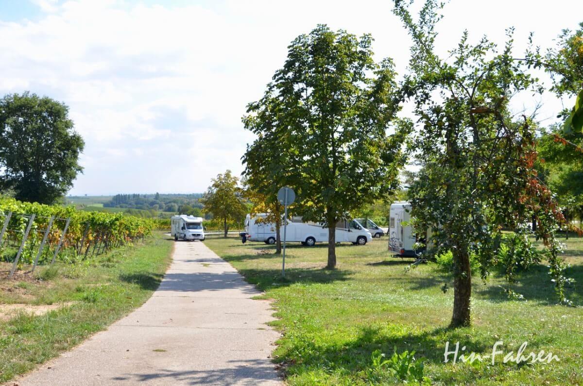 Wohnmobilstellplatz in der Pfalz