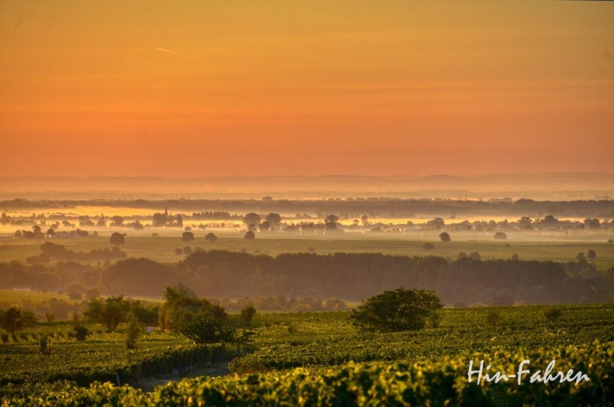 Lieblingsbilder Pfalz: Morgenrot und Dunst über der Rheinebene