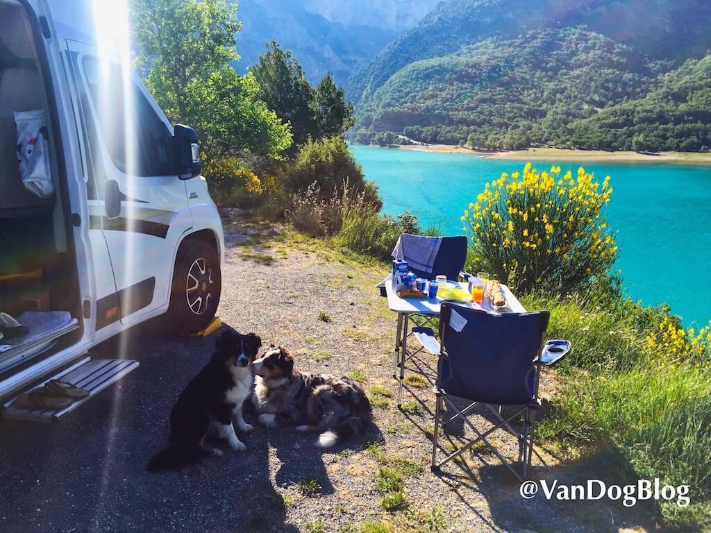 Mit Wohnmobil und Hunden ganz vorne am See