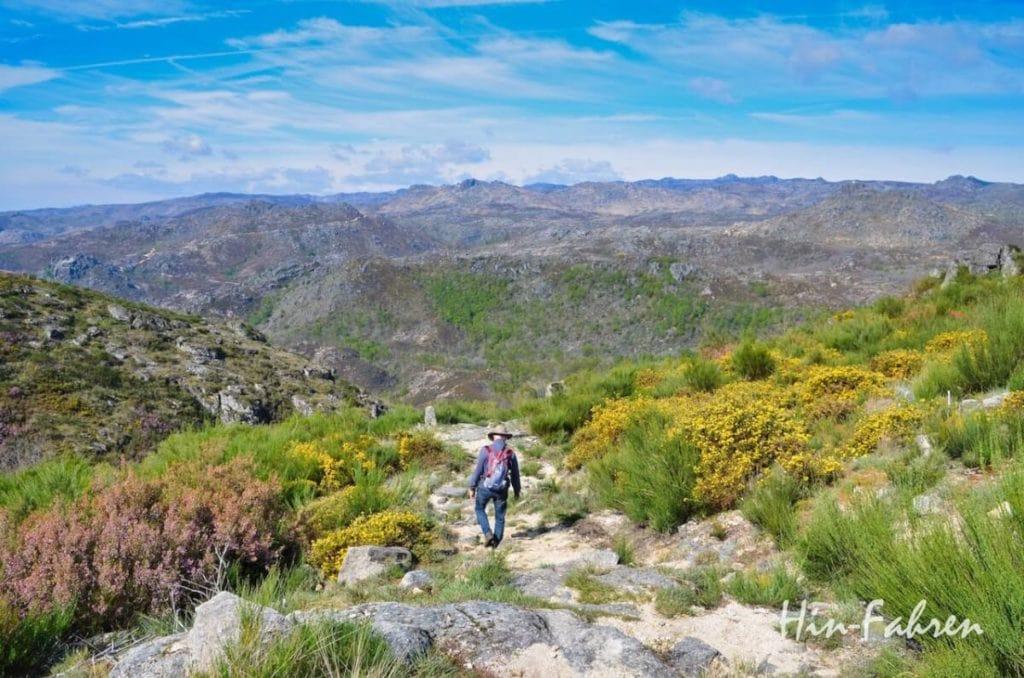 Mann wandert im Nationalpark mit Aussicht auf die Berge