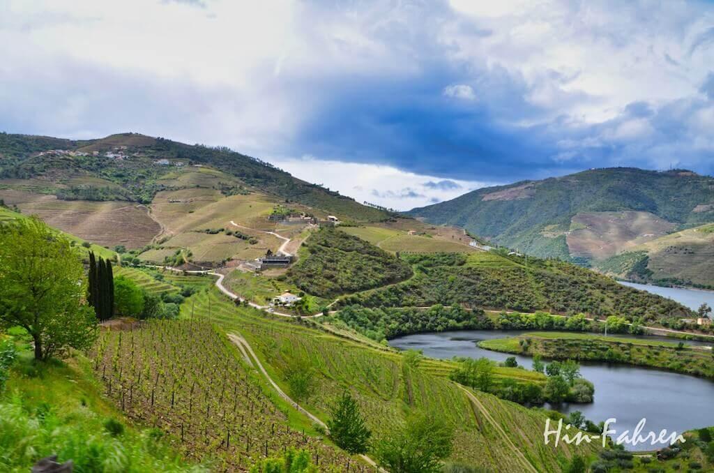Weinberge an einem Nebenfluss des Douro
