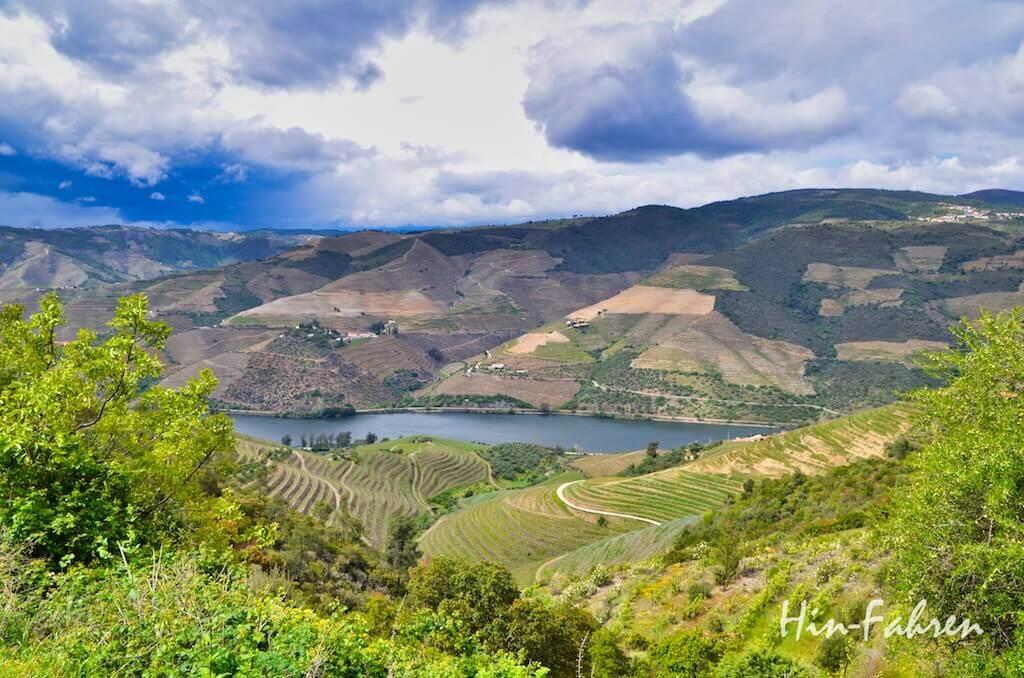 Ziel mit Wohnmobil Portugal: Weinberge und Douro