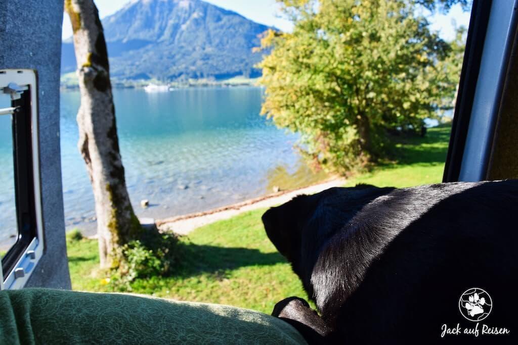 Blick aus dem Campingbus auf den See