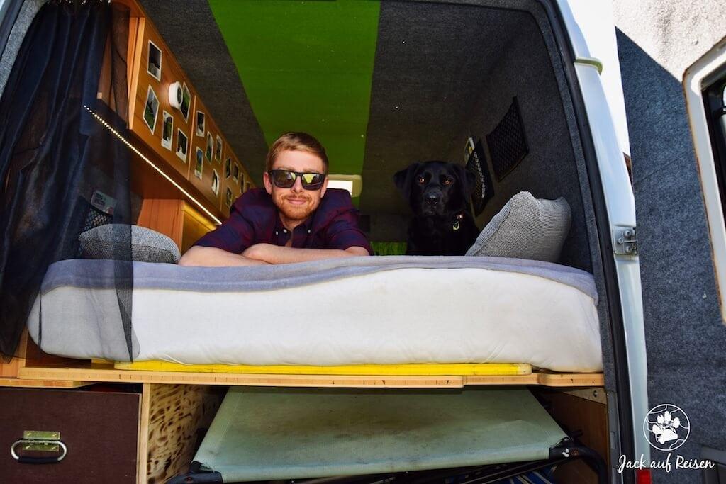 Mann und Hund schauen aus dem Kastenwagen Campingbus