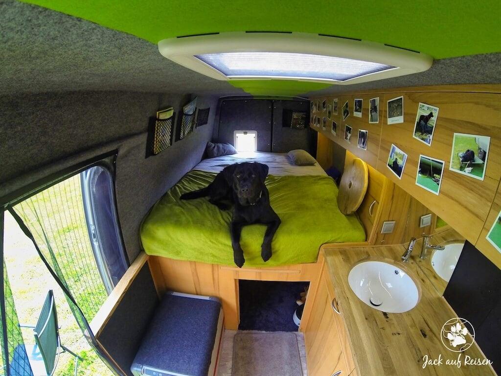 Hundebox unter dem Heckbett im Kastenwagen