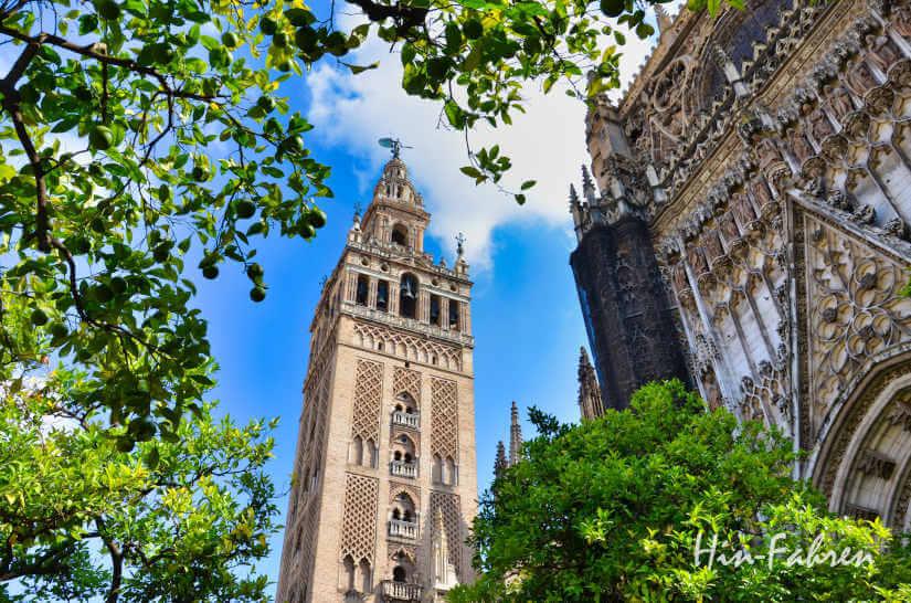 Hof der Kathedrale von Sevilla im Herbst