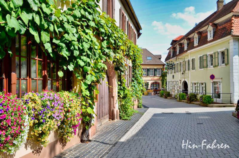 Urlaub mit Wohnmobil in der Pfalz: St. Martin